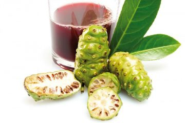 noni-juice-treatment-for-cancer